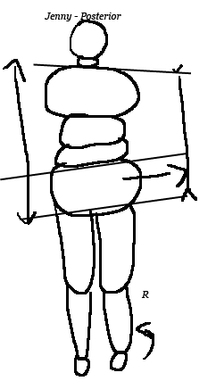 posterior-posture