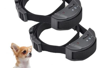 Discover Why I Recommend the Use of PetSpy Remote Dog Training Shock Collar!