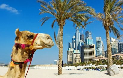 Discover The Most Appealing Spots Of Jumeirah Beach
