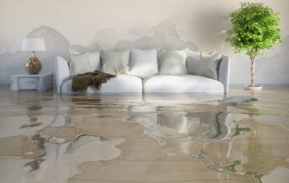 Moisture In The Basement – A Potential Risk Of Water Damage In Your House