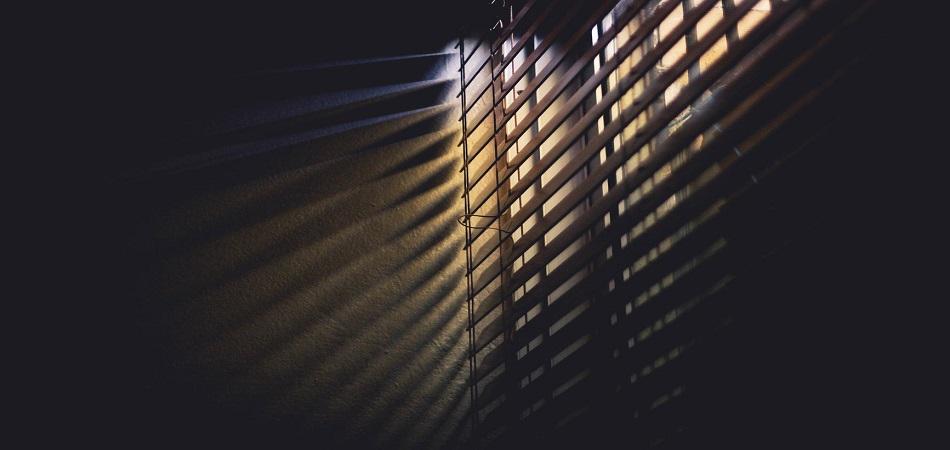 Spring roller window blinds