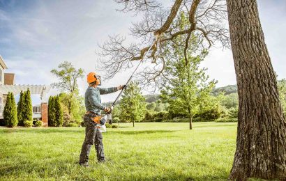 A Step By Step Guide for Pruning the Trees