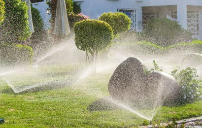What is a Sprinkler Irrigation System?