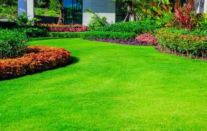 The Perfect Tips For Lawn Maintenance
