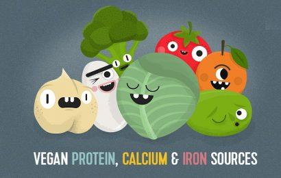 Why Choose Vegan Protein Powders
